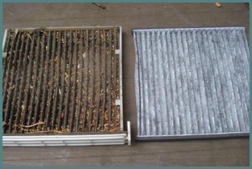 Name:  Drity vs clean cabin air filter.jpg Views: 791 Size:  29.8 KB