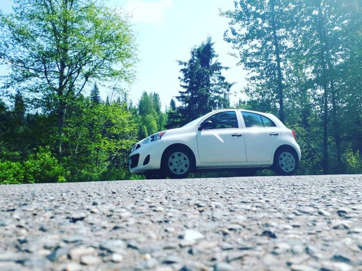 Name:  61831142_2371370902920736_6411758411918082048_o.jpg