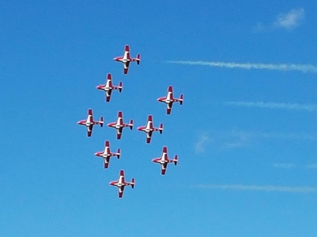 Name:  snowbirds resize.jpg
